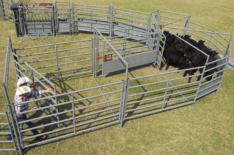WW Livestock Alleys, Tubs,& Cattle Handling Equipment