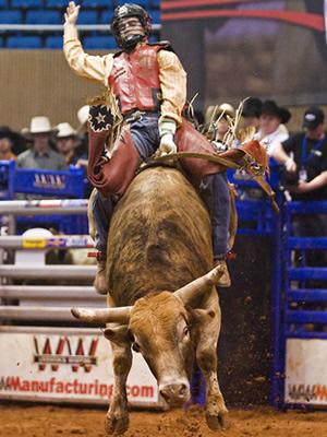 Ww Rodeo Equipment Bucking Chutes Amp Rodeo Arena S