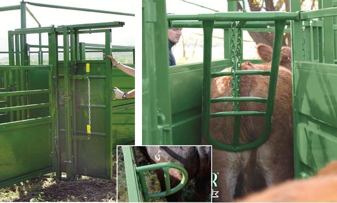 Powder River Cattle Chutes Cattle Working Squeeze Chutes